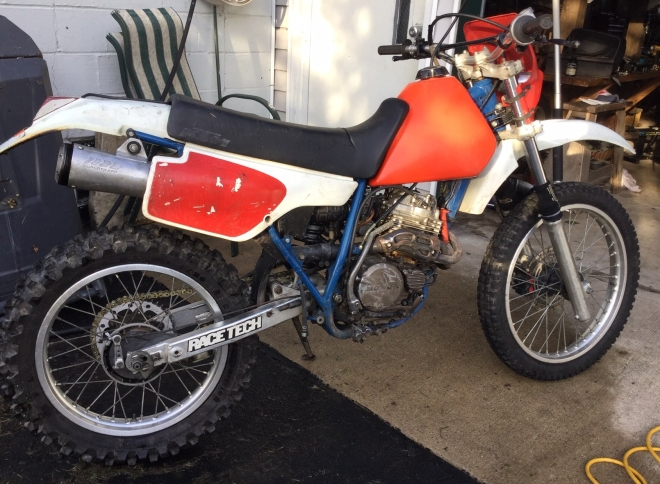 Honda 250 1986- Geoff Ryan IMG_2077 (1)